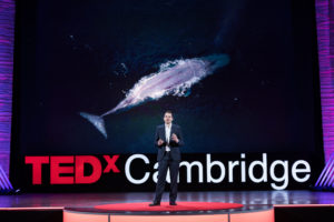 TEDx Cambridge, 2018: How to fix our Godzilla problem
